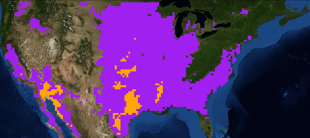 Currently, 3 percent of land in the U.S. is inhospitable to lizards (orange areas). In the next century, the scientists say the areas where lizards would not thrive could grow to 48 percent (purple area). Photo by: Ofir Levy