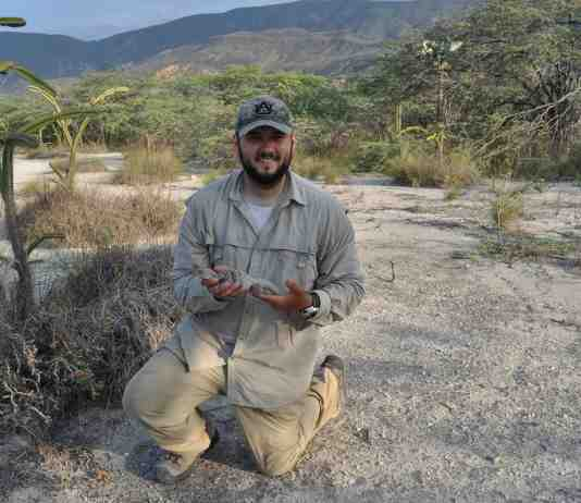 Chris Pellecchia, holding the first Ricord's Rock Iguana they captured on there April 2016 Expedition. An approximately 2 year old female, that they measured, sampled (DNA), and PIT tagged. Chris had hoped to encounter her again in summer of 2017.